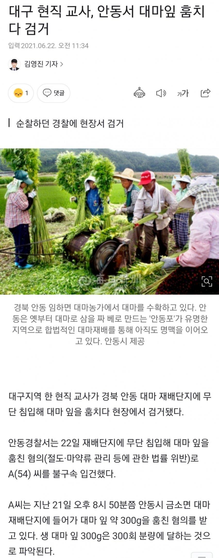 viewimage.php?id=29afd12be4ed36a379ec&no=24b0d769e1d32ca73fec8ffa11d0283194eeae3ea3f7d0da351cf9d3438770151df6679d38c69244ac814f3c6c67fdd970b835cb1c6e5e3d3947006819e9735bc75693a10bcdd175f5cf2dcbbf0c0d2237556688ad56e0573b30bf25cbd0d7c818ff1b4408dd2c