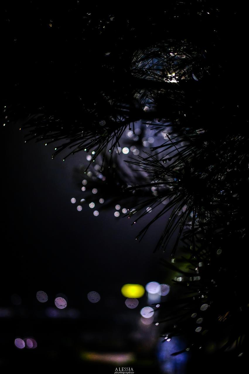 viewimage.php?id=29b4d72ff1d334b667bcc2a004d4&no=24b0d769e1d32ca73fec80fa11d028319511fc2d4825bdd78ebab3202c4405532ae83649acb8361024d91c8555e91bd77e6267a2e3705aeb5a6577412395605372b27e10c36decfa68