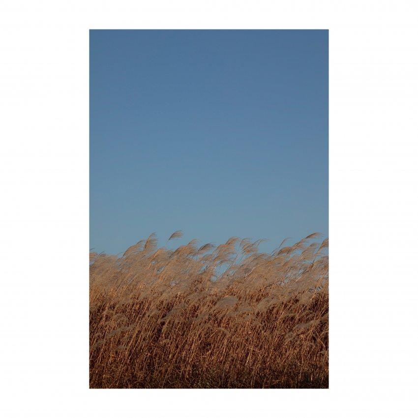 viewimage.php?id=29b4d72ff1d334b667bcc2a004d4&no=24b0d769e1d32ca73fec84fa11d0283195228ddcef8f2e560a89fed9a736e12636f6003b239cef19c7874d8e973b9fbe83a8ad32ecb2c04f83066e60f20a3766ffcda4e5f40c834d5d5a3d3b92cb1b37a2007a6227f399eda432f593439d734b7931ddb01639dcb3bf6f981d0e46