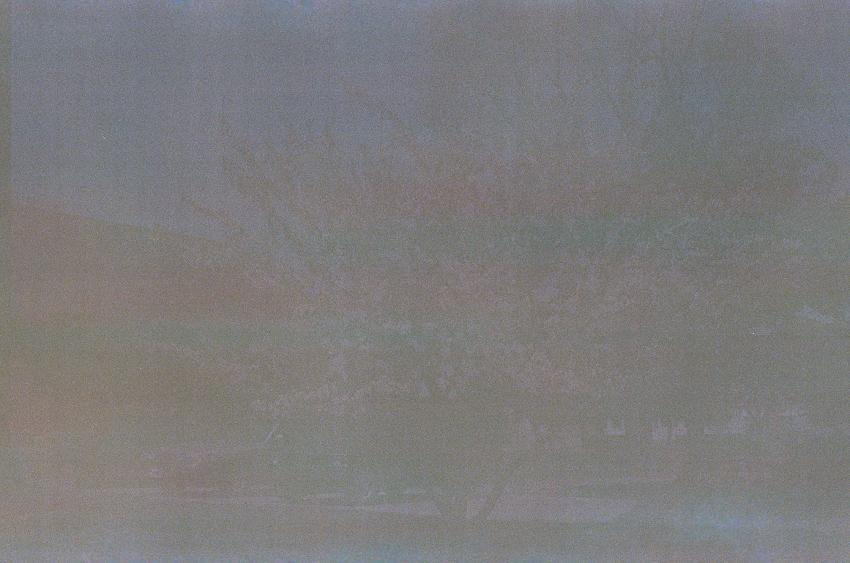 viewimage.php?id=2bb4dc2be6d335a37cbe&no=24b0d769e1d32ca73fec81fa11d02831b46f6c3837711f4400726d62dc69225f5e939038f9d0c9988ddd5218f73cbf6bff76f67bc8edc2d3b0740e7f06bfe093a744a42a14