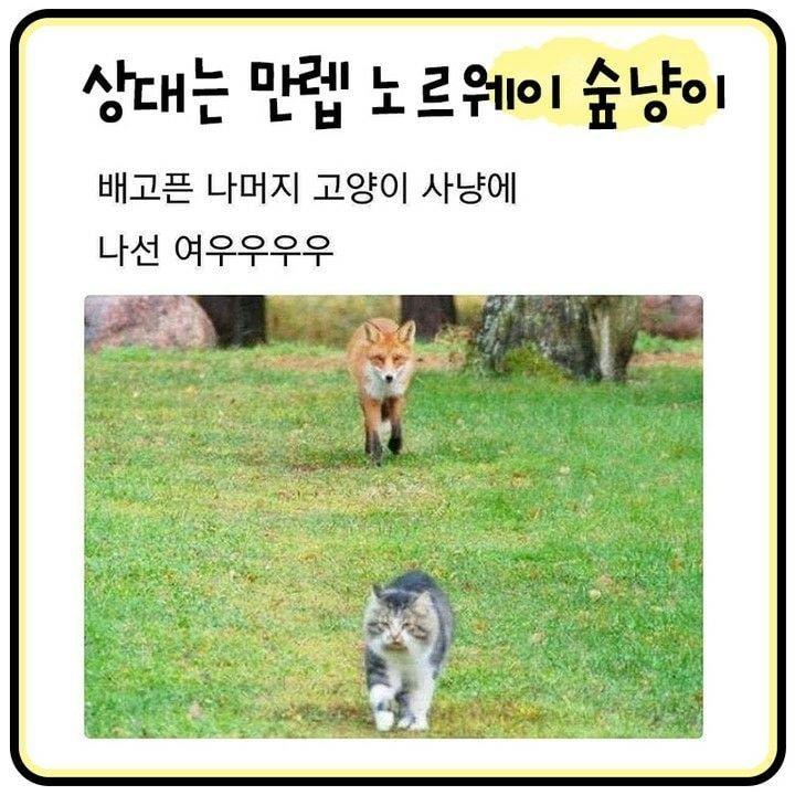 viewimage.php?id=2cb3d92be4de&no=24b0d769e1d32ca73feb86fa11d02831b7cca0f2855e21730c724febbf0e6d5212deff8ab91e298d91218499cb06cb7eeef447c70be3ced3e2509e79ca41551c98be03bc79f1b20867c33fec7dd345d0f0d4c39b5db5869e11389e05fb0605b0eda6c382f65f67