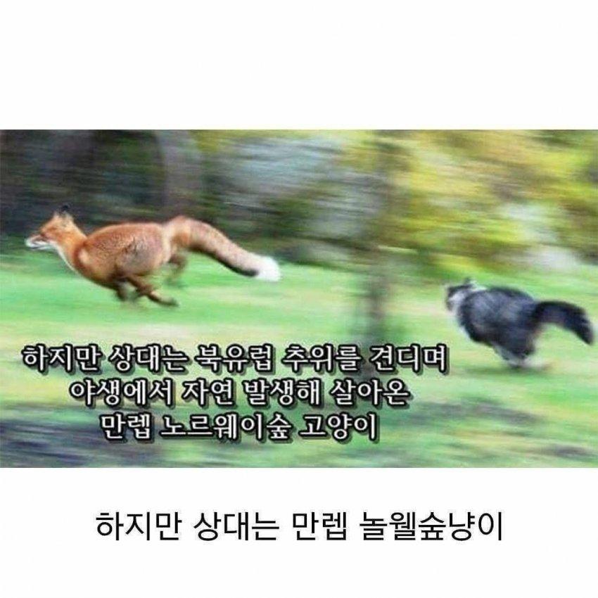 viewimage.php?id=2cb3d92be4de&no=24b0d769e1d32ca73feb86fa11d02831b7cca0f2855e21730c724febbf0e6d5212deff8ab91e298d914cea90c603cb76cb1109ffe138d5b185d21afc404e20b4f18021bf63663c606fd541afab8f984efdcf37a21cec2c22b7ee45b3a92c7002522db3660c7a