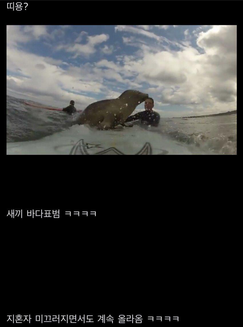 viewimage.php?id=2cb3d92be4de&no=24b0d769e1d32ca73fec8ffa11d0283194eeae3ea3f7d0da351cf9d3408d70107ae04e0ede669fde74e9360ada17eb680b947d3b4539789ed008154728497723f2a5f9a947f64e98cf2e2179ba8e7d3d41ea2a68102cb3d1b6a36c18e16bd02a1a455b0f915d