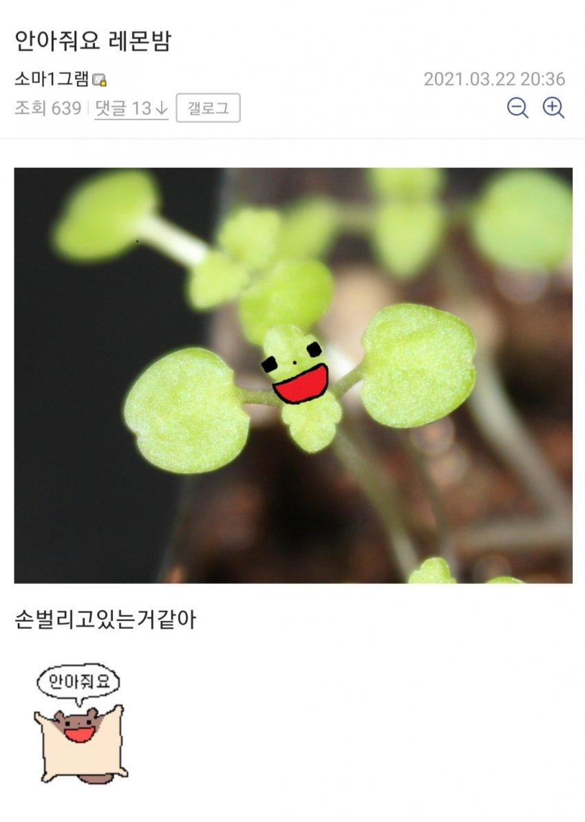 viewimage.php?id=39afd523&no=24b0d769e1d32ca73dec80fa11d028316f56ba15eaa5e1d2899cdab8d8a43bad258e9ef1ae81e2a5521bd6ce3ddb9b1d709f091b9f6d9f96275dd4cb3274b8b683e75e2a308292a7daf44a6d4ebd3a264c4fe5e4976f703569d3