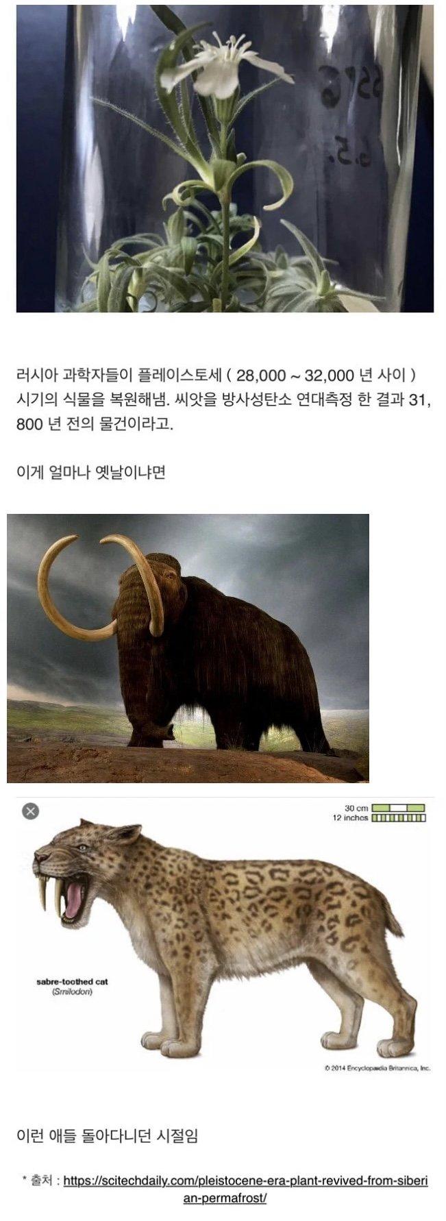 viewimage.php?id=39afd523&no=24b0d769e1d32ca73dec81fa11d028314d3faebecfec25ed6aa779bc7956f30e4ebb873c8d1352a5c0aaa0a396c8ffaee488bcf04528b73c593ff7c66b74e8a9e0b45ddb97517dcb35f4db1a92823c5eb6df0b41a0fb1aa7b9ee76ea7438df57c9fbe15bec