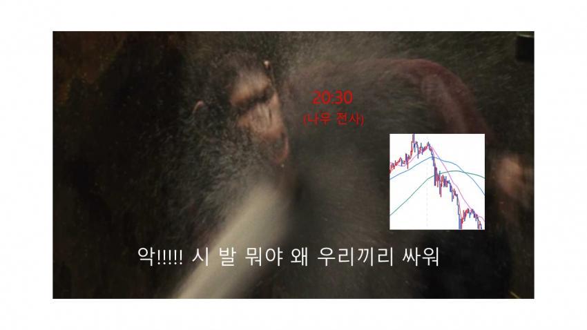 viewimage.php?id=39b8de24e4d53fa37c&no=24b0d769e1d32ca73dec82fa11d02831d5ca5516da218d33b13f2760b9125b31f5ad8f2688792af5076fde99ae02953ae03ea3feb1809da31599b1aee6f7541b989057cd