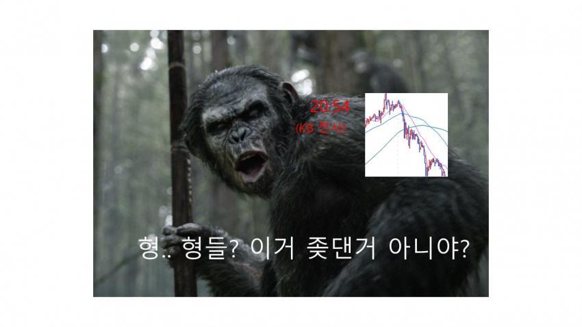 viewimage.php?id=39b8de24e4d53fa37c&no=24b0d769e1d32ca73dec82fa11d02831d5ca5516da218d33b13f2760b9125b31f5ad8f2688792af5076fde99ae02953ae03ea3feb1809da315cdb2a4b0f15648038c576a