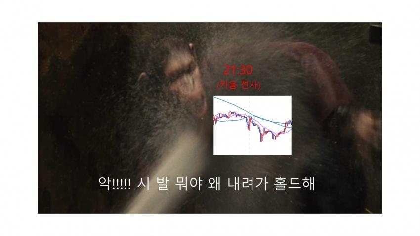 viewimage.php?id=39b8de24e4d53fa37c&no=24b0d769e1d32ca73dec82fa11d02831d5ca5516da218d33b13f2760b9125b31f5ad8f2688792af5076fde99ae02953ae03ea3feb1809da315cfb7f4b2a0564e3ad4005b