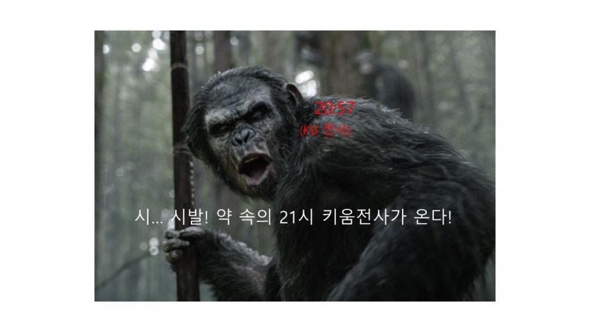 viewimage.php?id=39b8de24e4d53fa37c&no=24b0d769e1d32ca73dec82fa11d02831d5ca5516da218d33b13f2760b9125b31f5ad8f2688792af5076fde99ae02953ae03ea3feb1809da3409bb3a6e7a3534ae7a01d7b
