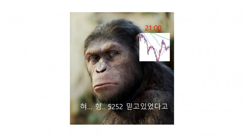 viewimage.php?id=39b8de24e4d53fa37c&no=24b0d769e1d32ca73dec82fa11d02831d5ca5516da218d33b13f2760b9125b31f5ad8f2688792af5076fde99ae02953ae03ea3feb1809da340cab3f0b2a0014d068951f3
