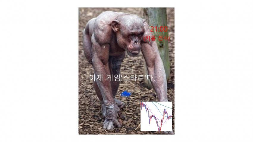 viewimage.php?id=39b8de24e4d53fa37c&no=24b0d769e1d32ca73dec82fa11d02831d5ca5516da218d33b13f2760b9125b31f5ad8f2688792af5076fde99ae02953ae03ea3feb1809da3449eb3afe3a2551fa83d1f5e