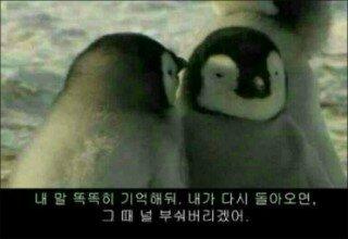 viewimage.php?no=24b0d769e1d32ca73dec81fa11d028314d3faebecfec25ed6aa779bc7a5ff3146b3c93259fe06d978a83c6f500f23e8c5beacceaa8acb549d9df7e09c01110ee1e48851556b14055a2c09c11e61f600a23f4c28067e7c1f773ec4aed0b5777e5aa6c4b32c1