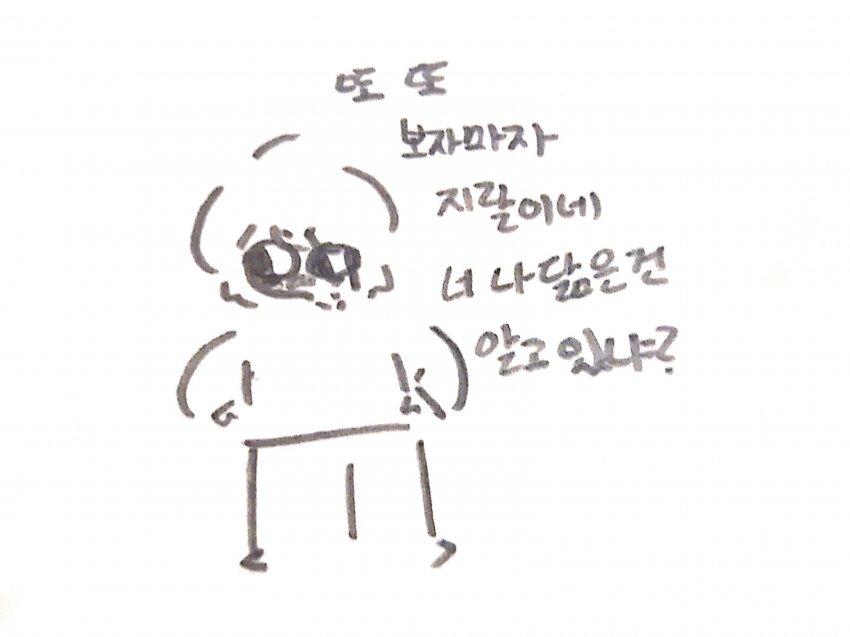 viewimage.php?no=24b0d769e1d32ca73fec87fa11d0283168a8dd5d0373ee31e5f23e84e6228772cf4c12031210432de87665a0ada7aa689ba8986a14bbae8a23e6a2c5c59cd2520c7628d7a96ef37dabf93b472125fff9e495633003efa00a9f3fcb29f1cdcf
